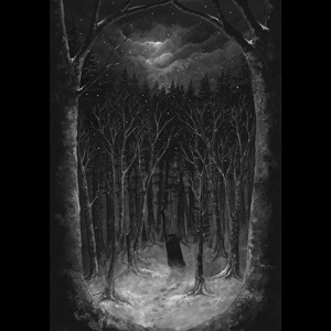 Cover for Paysage d'Hiver's Im Wald